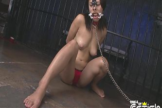 Tied up Japanese chick gets filmed in the prison